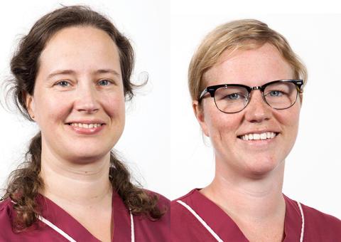Två nya specialister i bilddiagnostik på Universitetsdjursjukhuset
