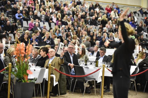 Budgivning på auktionen Swedish Select Horse Sales