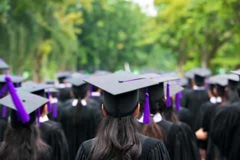 Bamboosh Provides Advice to Opportunity-Seeking Graduates