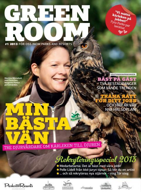 Green Room Nr 1 2013