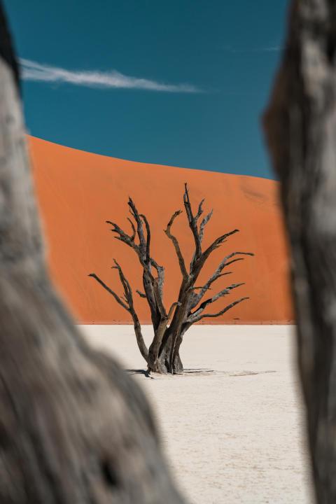 Alphaddicted_Roadtrip Namibia_10