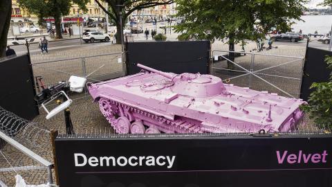 Pink-0304