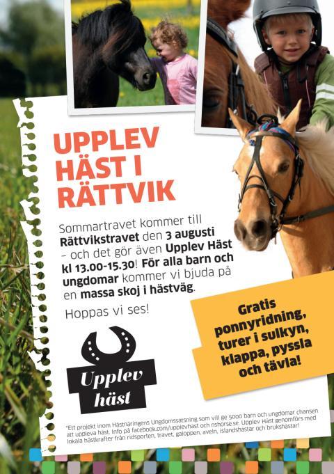 Upplev Häst travar in i Rättvik