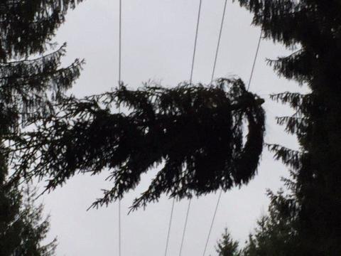Tekniska verkens summering av stormen Helga