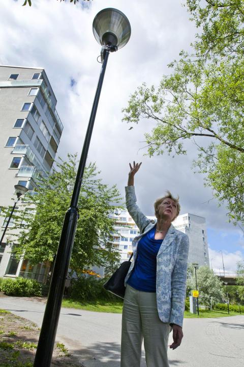 Ulla Hamilton (M): Smart belysning på Kungsholms strand halverar energiförbrukningen