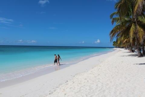 Sandet på Isla Saona på Punta Cana er kridhvidt - samme farve som den sne, som mange håber på falder i juledagene.