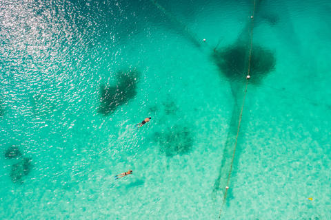 TUI lancerer Zanzibar