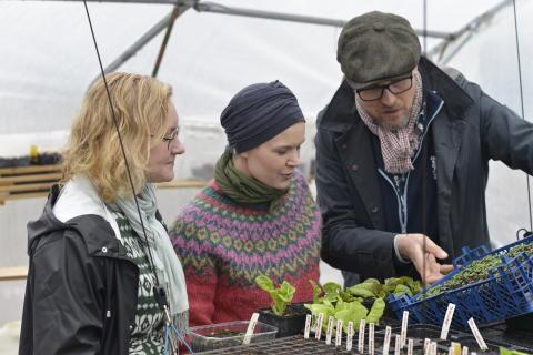 Nelson Garden lanserar nytt frösortiment i samarbete med Sara Bäckmo