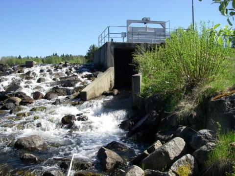 Jämtkraft återskapar fri vandringsväg för fisk
