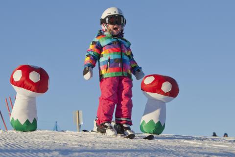 Oslo vinterpark skiglede