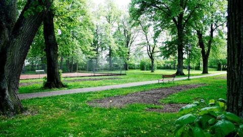 Asylenparken i Vadstena på Gula listan
