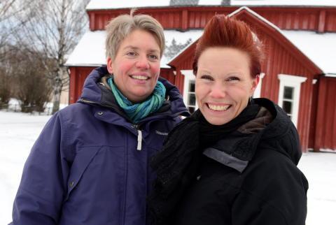 Projektledare Psykisk hälsa i fokus - Skellefteå 2014