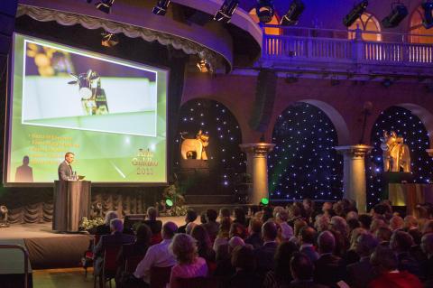 Bild från Arla Guldko-galan 2013