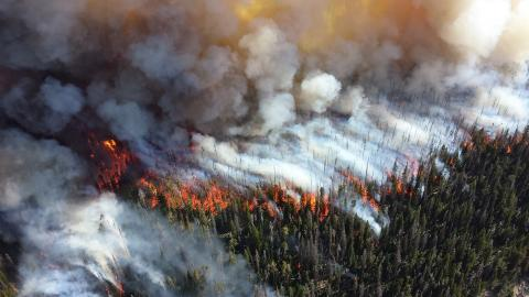 Aons katastrofrapport sammanfattar juli månads naturskador