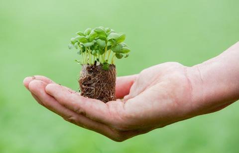 Spisa Smaker minskar fotavtrycken i miljön