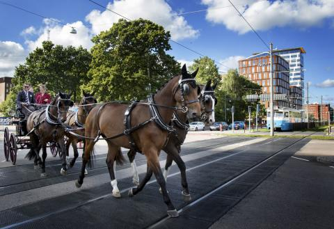 Gothenburg is making Longines FEI European Championships the most sustainable event