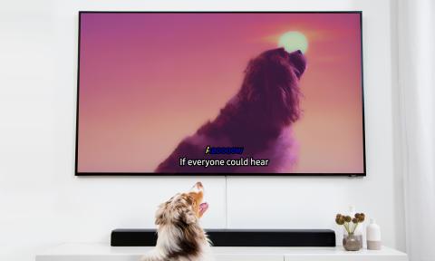 Dog Karaoke TV
