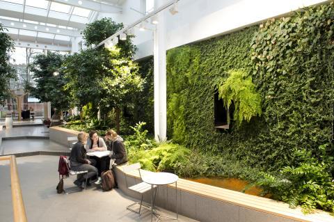 Växtmiljö på Karolinska Institutet