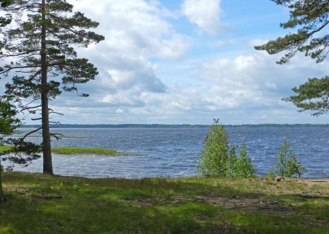 Provfiske i några av länets sjöar