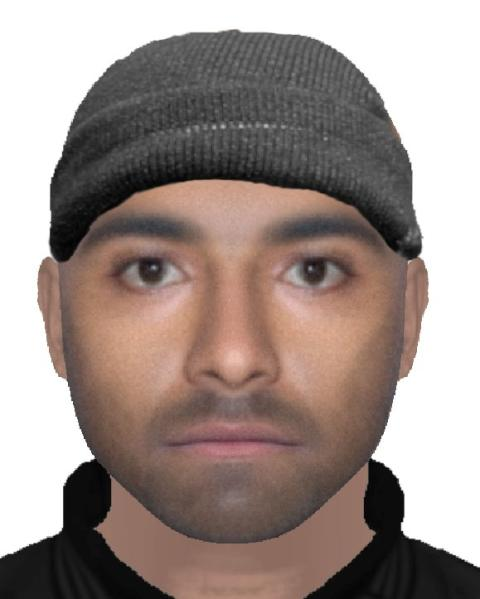 Appeal to trace suspect in attack on woman