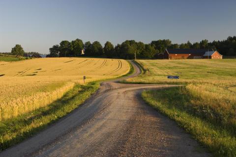 Hur kan foodservice bidra till goda villkor för ekologisk produktion?