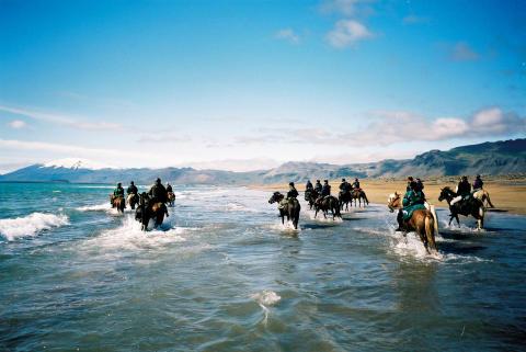 hevoset-rannalla-islanti