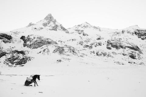 Les Sony World Photography Awards 2017  mettent fin au suspense et dévoilent les grands gagnants du concours de photographie  le plus important au monde