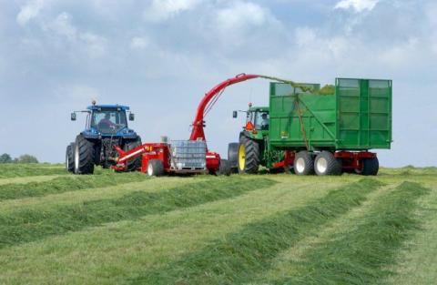 SiloSolve® FC keeps grass silage fresher with two fungus-fighting bacterial strains