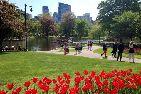 Nyhet: USA växer hos Ving – lanserar resor till Boston