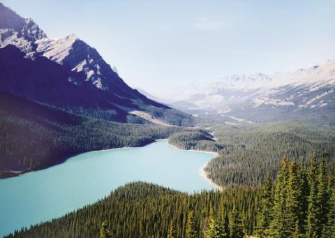 Ramblers Walking Holidays: Walking in the Canadian Rockies