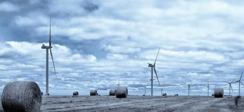 Capturing the glory of wind power