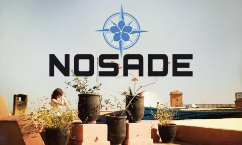 Junges Berliner Yoga-Reiseunternehmen NOSADE lädt zum Yoga im Rosengarten im Stadtpark Hamburg ein