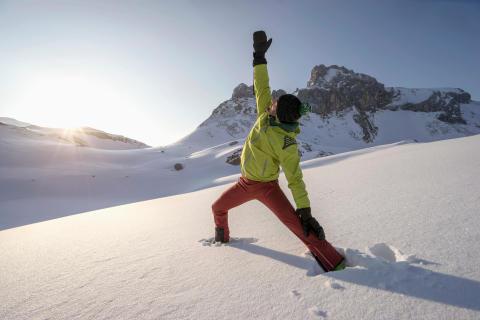 Snowga i Alperna