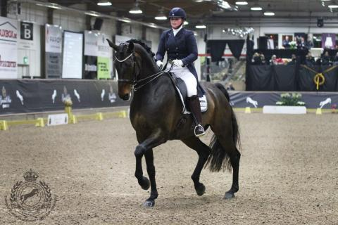 OS-ryttare till Gina Tricot Grand Prix Dressage Masters!
