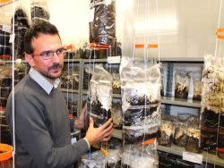 """Postepay Crowd contribuisce all'economia ecosostenibile  con il supporto al progetto """"Funghi Espresso"""""""