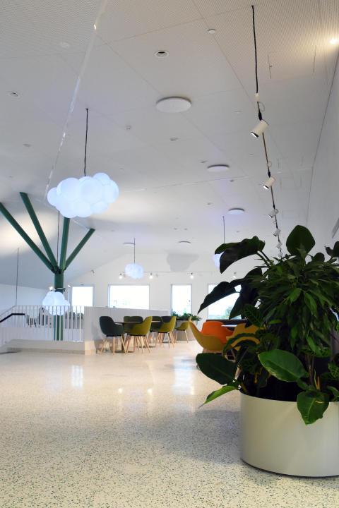 Rättspsykiatriskt Centrum Trelleborg