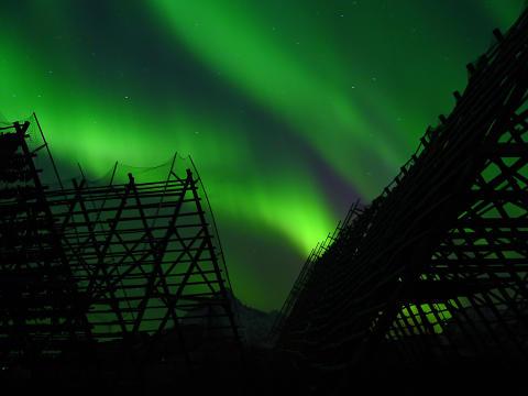 Nordlicht über Svolvær auf den Lofoten