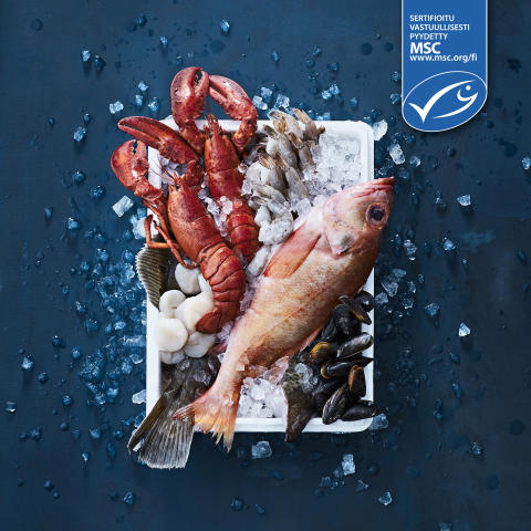 Suomen ainoat MSC-sertifioidut kalatiskit löytyvät nyt Food Market Herkuista