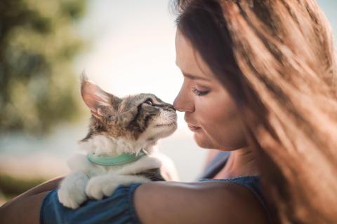 Arken Zoo inför Tasstid – betald ledighet för anställda som skaffar valp eller kattunge