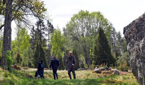 Säkerhetsgenomgång och utforskning av omgivningarna på kulturreservatet Öna inför pilotprojektet.