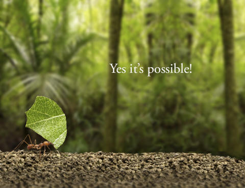 Greencarrier_Yes_it_is_possible
