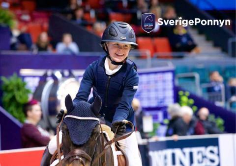 Sverigeponnyn – landets nya ponnycup!