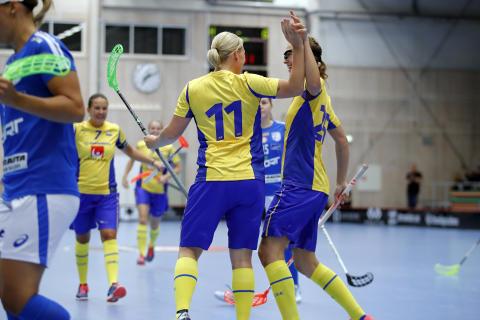 Nya spelsystemet bäddade för Sveriges seger