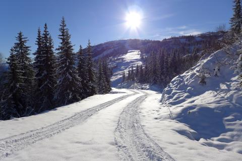 Rekordtidig skidpremiär i Norge - 15 anläggningar öppnar till helgen