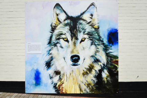 The wolf by Dawn Aston