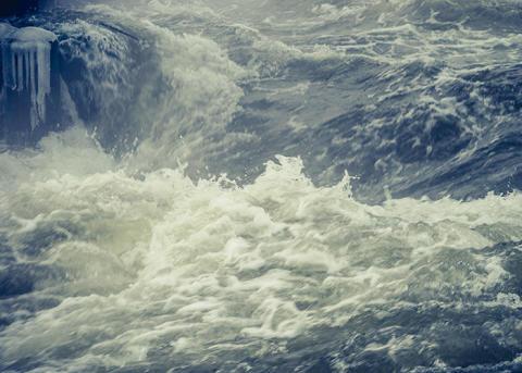 Tranås Energi investerar för Stiftelsen för Östersjölaxen