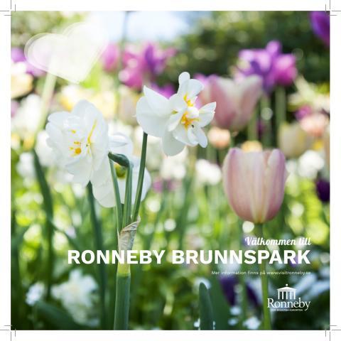 Ronneby Brunnsparks historia i korthet+karta