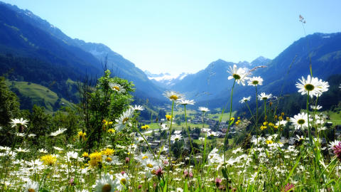Klosters Davos Schweiz © Marcel Giger