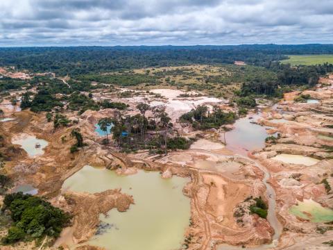 Skovbrandene i Brasilien er slukkede - men skovrydningen fortsætter