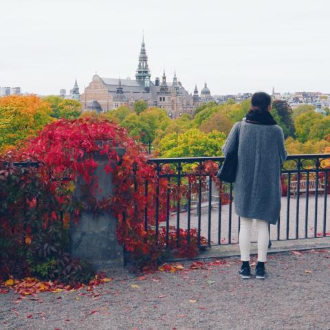 Fler kinesiska besökare till Stockholm